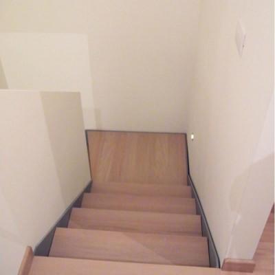 ступени лестницы Thema